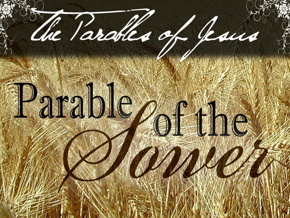 parable of the sower liturgical bible study