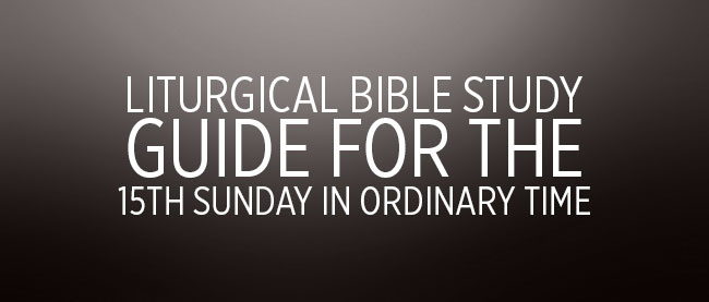 15th Sunday in Ordinary Time Cycle C